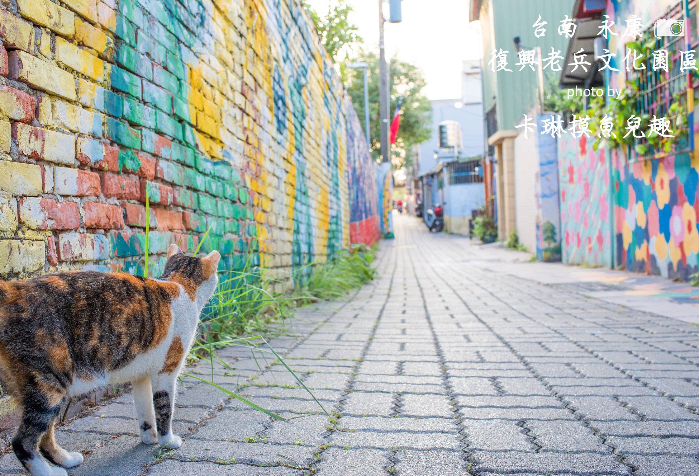 台南旅遊景點 | 永康 復興老兵文化園區 – 滿是貓咪的彩繪眷村 IG打卡拍照好去處