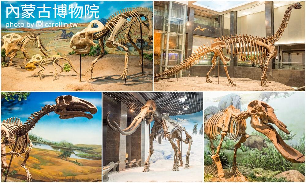 呼和浩特旅遊景點 | 內蒙古博物院 – 壯觀的恐龍化石 自然生物 歷史文物展示