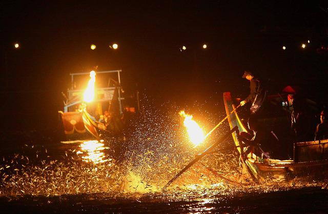 【遊記】基隆→金山 搭世富郵輪前進金山漁港看磺火捕魚